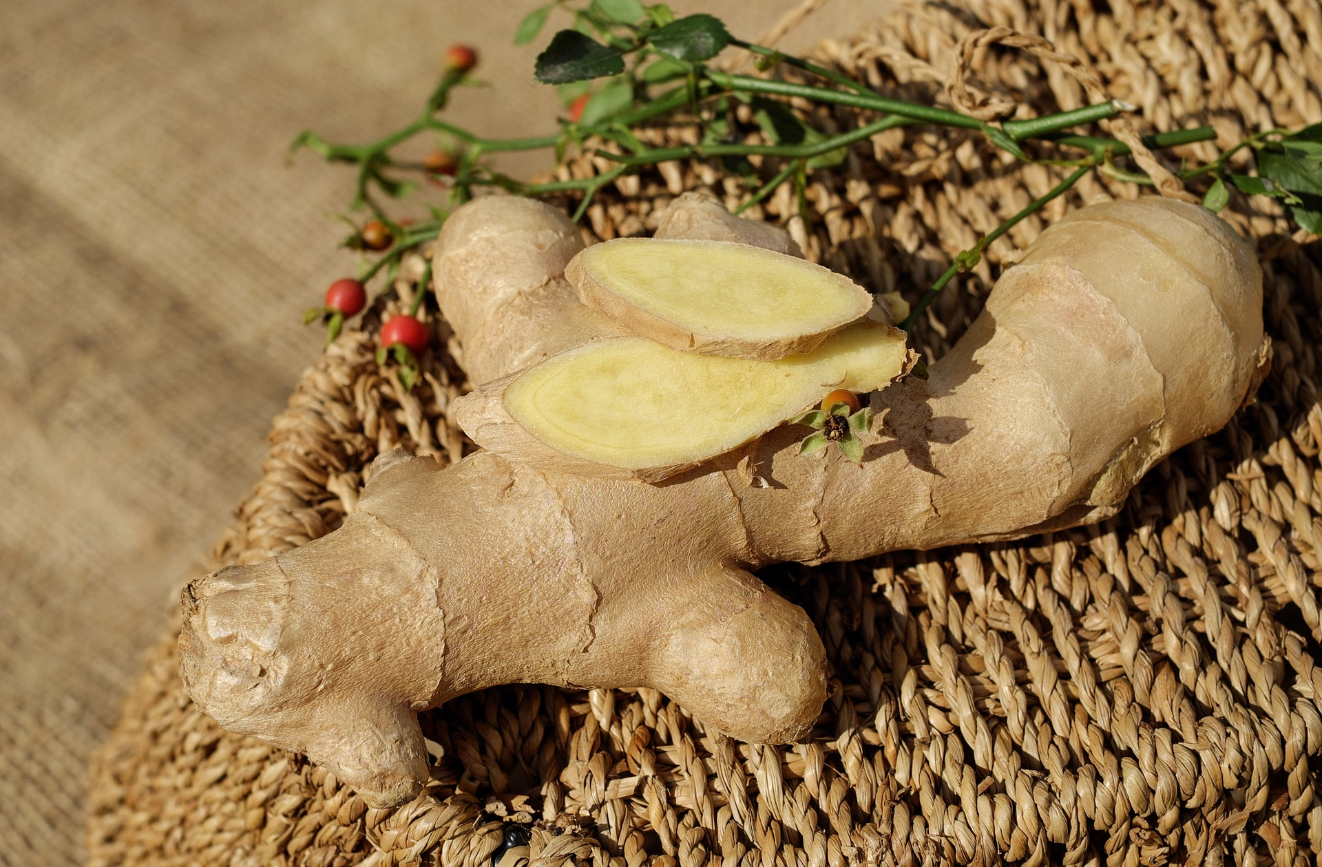 ginger-1738098_1920