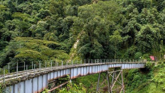 -saltando-bungee-jumping-en-Amagá-Antioquia